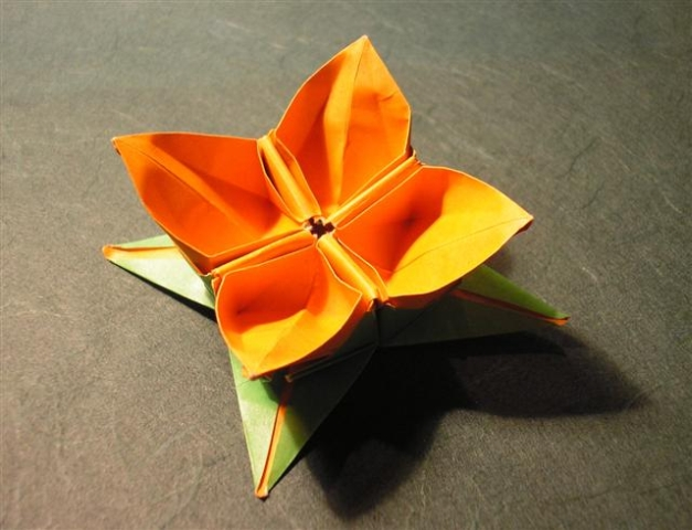 origami blumen anleitung america 39 s best lifechangers. Black Bedroom Furniture Sets. Home Design Ideas